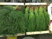 monks beard in bunches, barba di fratte