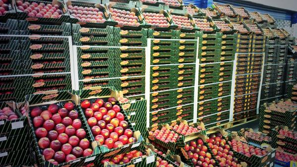 pallets with lost of peaches and nectarines in cardboard boxes
