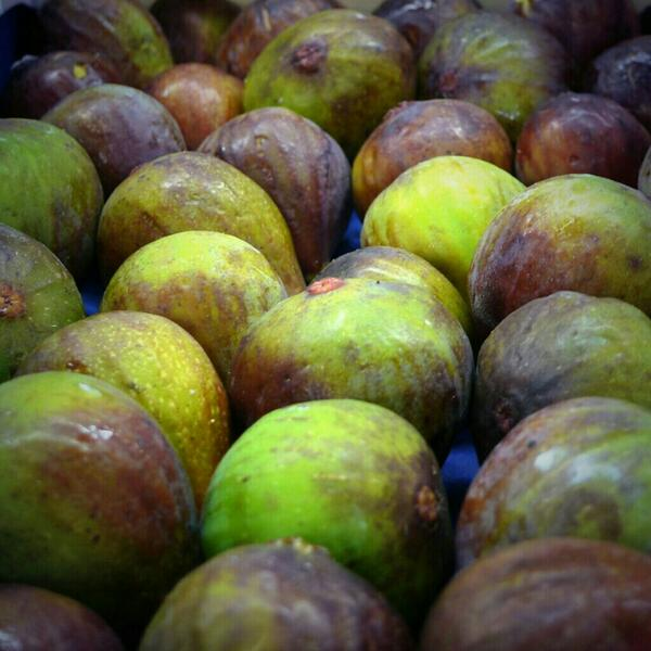 closeup of green figs