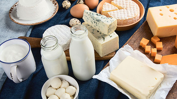 Different types of dairy products, cheese, milk, eggs