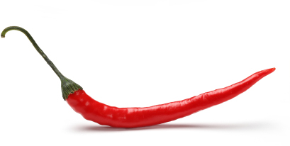 single red chilli pepper isolated on white background