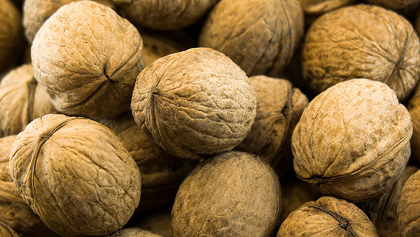 Close-up macro photo of walnuts as brown background