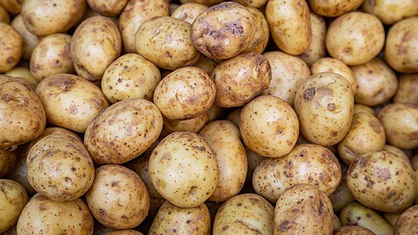 abundance of potatoes (potato category)