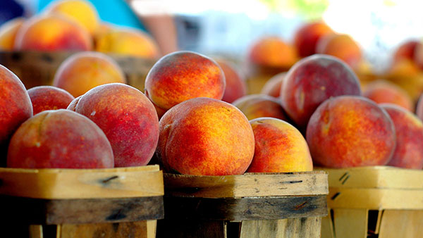 Peaches in basket, stone fruit