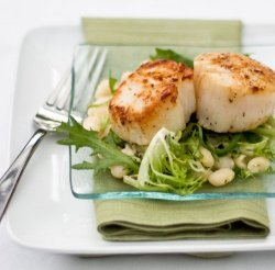 Pan Seared scallops, beans, frisée and chilli