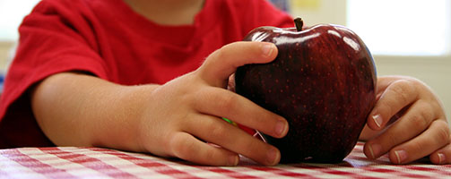 """""""Child holding apple in classroom. Focus primarily on apple, also on fingers of child's left hand."""""""